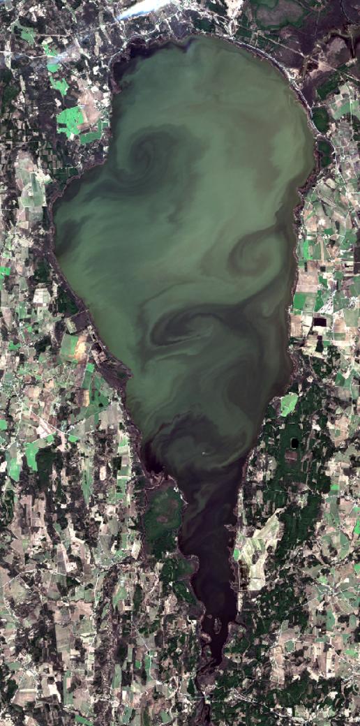 Algandmed: Sentinel-2, 25. märts 2020. Andmetöötlus: TÜ Tartu observatoorium, Kristi Uudeberg